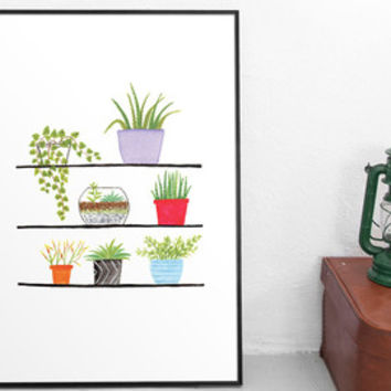 Succulent art, plant illustration, drawing and illustration, art prints, wall art prints