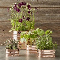 Copper Oval Ribbed Planter