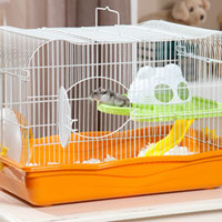 Prevue Pet Products Large Hamster Haven 2005 | DrsFosterSmith.com