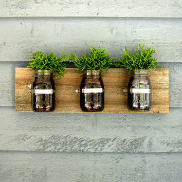 Mason Jar Wall Planter / Organizer Decor
