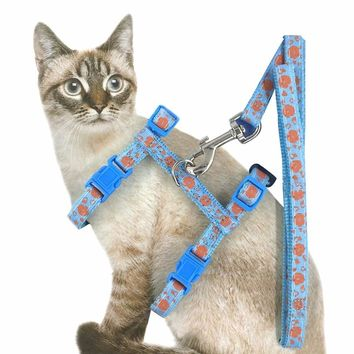 Belt Cat Kitten Halter Collar