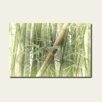 Bamboo Canvas Anthotype Nature Print. Bamboo AnthoBlend Home Decor Canvas for your Art Ideas.