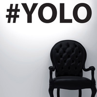Vinyl Wall Decal Sticker YOLO #5471