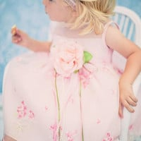 Floral Embroidered Organza Overlay Baby Girls Dress in Ivory, Blue, Pink & Lilac