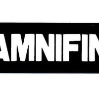 Motorcycle Helmet Sticker - DAMNIFINO Helmet Sticker