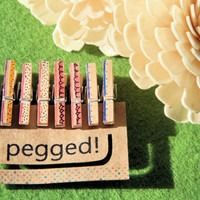 Mini Wooden Pegs in Limited Edition Summer Fruits (Set B) - 8 pack