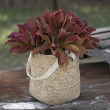 Woven Cement Planter with Long Cotton Handle ~ Small