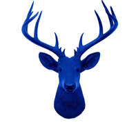 Faux Deer Head - The XL Aksel - Blue Resin Deer Head- Stag Resin Blue Faux Taxidermy- Chic & Trendy