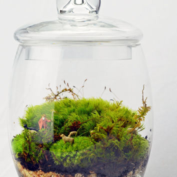 Moss Terrarium Large // Sheep // Shepherd // Green Gift