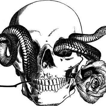 human skull snake tattoo art rose png from DigitalGraphicsShop on