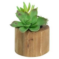 Artificial Potted Succulent - Threshold™ : Target