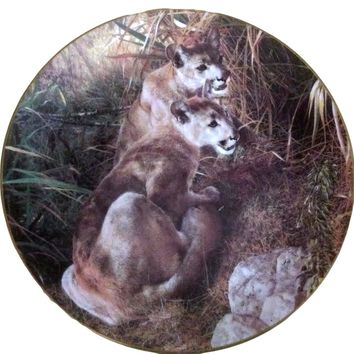 Carl Brenders Mountain Lions Shadows in the Grass Collector Plate From A Family Affair Series
