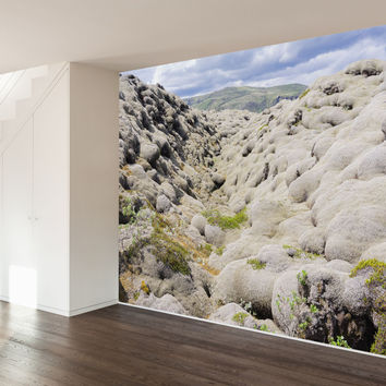 Paul Moore's Rocky Fields Mural wall decal