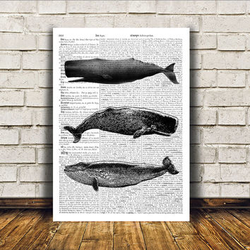 Whale poster Nautical art Marine print Beach house decor RTA54