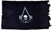 Assassin's Creed Black Flag - The Official Flag