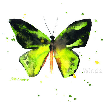 Green Butterfly Watercolor