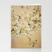 Baby's Breath Stationery Cards by Around the Island (Robin Epstein)