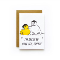 Kid Cards - Animals (Assorted)