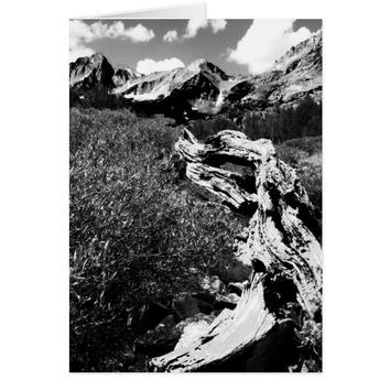 Dead Tree Mountains, Black and White, Blank Inside Card
