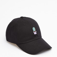 Potted Cactus Baseball hat
