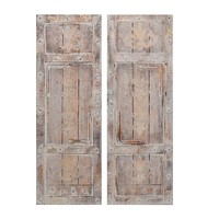 Vintage Door Canvas Art Prints, Set of 2 | Kirklands