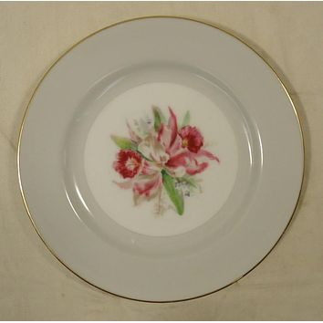 Noritake 5049 Vintage Bread & Butter Plate 6 1/2in China Gold Rim -- Used
