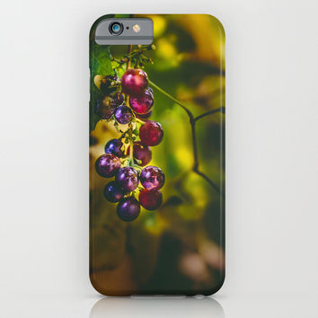 Pinot II iPhone & iPod Case by HappyMelvin
