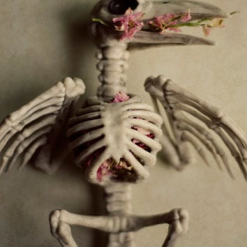 Halloween wall art, skeleton, crow, skull, flowers, spooky, dark, grey, halloween decor, wings, bird, fine art photo, still life, 8x10 print