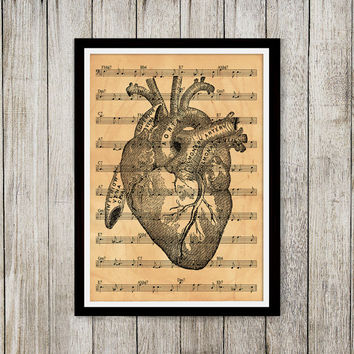 Heart print Anatomy art Antique poster Old paper print NP095