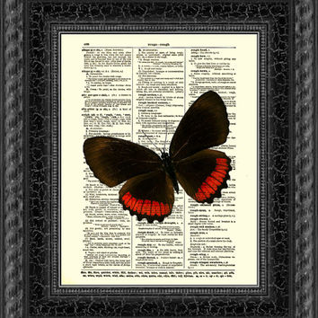 Red Rim Butterfly Butterfly Print, Red & Black Butterfly Art, Antique Dictionary Print, Wall Decor, Wall Art, Mixed Media Collage
