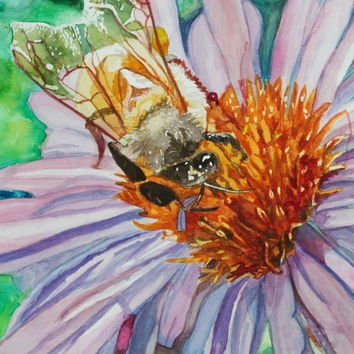 Cosmo Bee Watercolor Print. Cosmo painting. Watercolor floral. Bee painting. Cosmo wall art. Cosmo picture. Bee wall art. Cosmo flower.