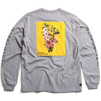 Ashes To Ashes Longsleeve T-Shirt Heather Grey
