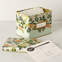 Grand Dame Recipe Tin by Rifle Paper Co.