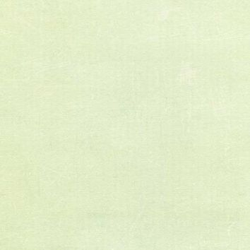 ABSTRACT MINT BACKDROP 5x6 - LCPC9855 - LAST CALL