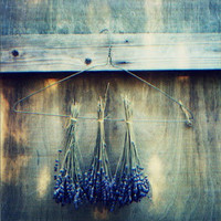natural modern interiors: Lavender ideas :: How to make lavender sachets