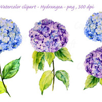 hand painted watercolour blue hydrangea digital clipart printable instant download scrapbook watercolor