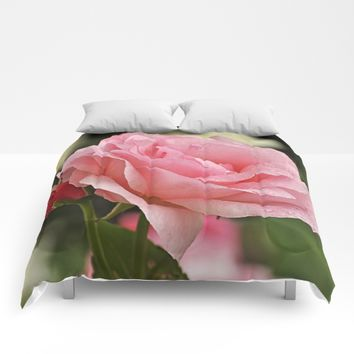 Wet and pink beauty Comforters by Pirmin Nohr