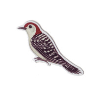 Red-bellied Woodpecker Bird Magnet