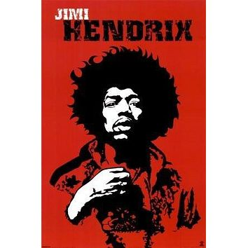 JIMI HENDRIX POSTER Amazing Pop Art RARE HOT NEW 24x36