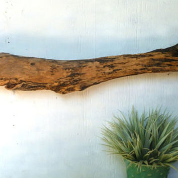 Driftwood Wall Art, Wooden Whale, Large Wall Art, Beach House Decor,  Driftwood