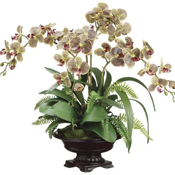 Lifelike Variegated Phalaenopsis Orchid in Decorative Footed Bowl