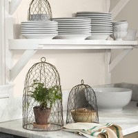 Chicken Wire Cloche Set