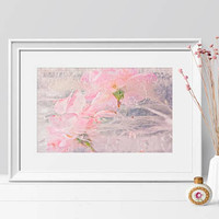 Large Floral Fine Art Print  Contemporary Photography. Botanical Abstract  Fine Art Photography. Soft Pink Home Decor
