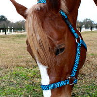Blue Zebra Horse Halter - Pick Your Size