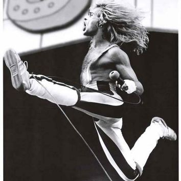 Van Halen David Lee Roth 1980 Poster 24x33