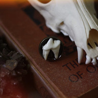 canis // coyote molar filigree ring
