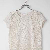 Coco & Jameson Lace Top