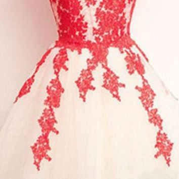 Floral Lace Embroidered Tutu Dress