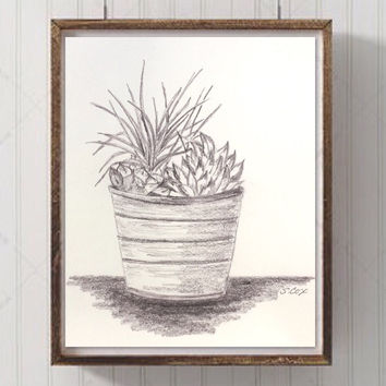 Pencil drawing, Succulent Art, kitchen art, still life drawing, graphite cactus garden, Pencil Art, plant drawing, black and whiteSucc