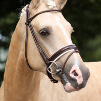 Premiera Monaco Bridle - Brown/White